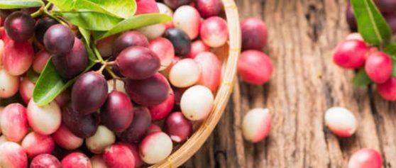 มะม่วงหาวมะนาวโห่พืชที่สามารถยับยังโรคได้หลายโรค